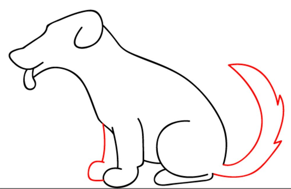 rabo do cachorro